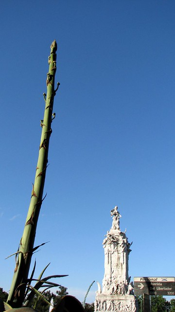 Giant Asparagus Looking Plant And Monument Explore