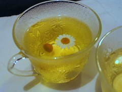Chamomile Tea - Debenhams