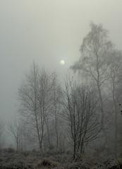 Thin sun
