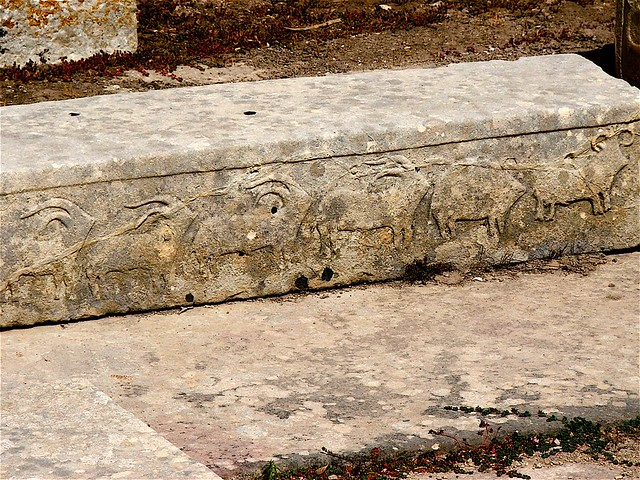 Stone age carving tarxien temples flickr photo sharing