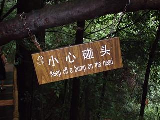 Chinglish 4