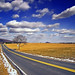 Country Mile by Nicholas_T