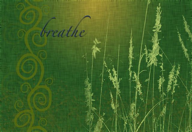 free breathe wallpaper flickr photo sharing