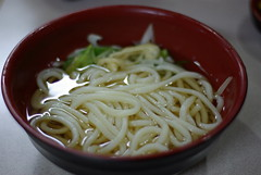 carbonara(0.0), noodle(1.0), spaghetti(1.0), pici(1.0), food(1.0), dish(1.0), chinese noodles(1.0), cuisine(1.0), udon(1.0), soba(1.0),