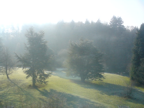 cameraphone trees winter geotagged builthwells k550i geo:lat=52145696 geo:lon=3420047