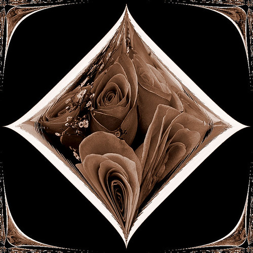 Chocolate Roses Tile