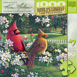 Country Music Jigsaw Puzzle - Birds