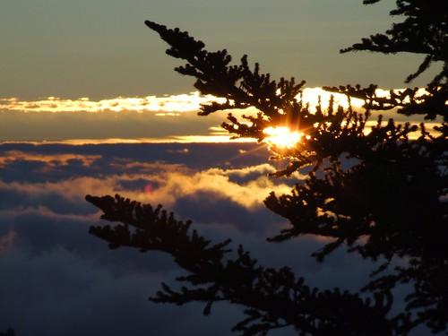 sun clouds sunrise landscape scenery carolina blueridgeparkway wns brp westernnorthcarolina