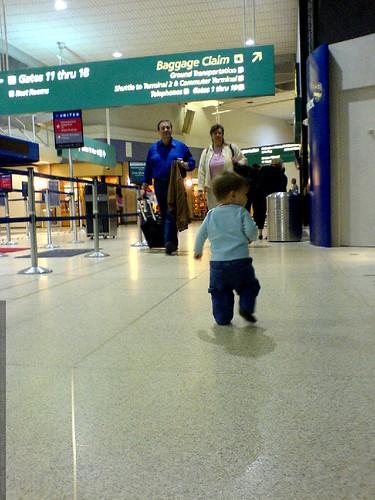sequoia, wandering around terminal 1 at SAN airport   DSC00470