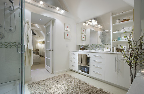 Candice Olson Master Bathroom