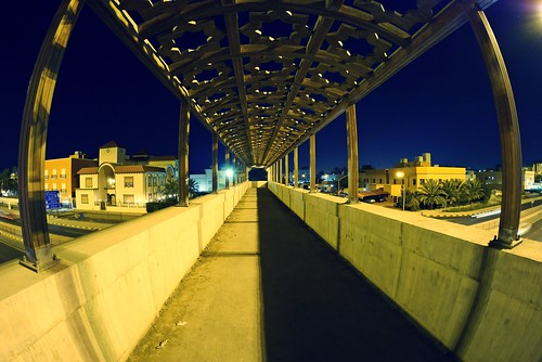 Fisheye Bridge