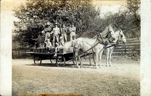 Fruit pickers on a two-horse wagon