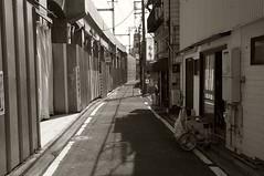 浄化された街