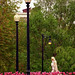 """Boston - Public Gardens """"A Walk in the Park."""""""