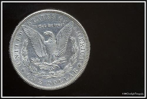 1903 silverdollar morgandollar herbdunn dunnrightphotography