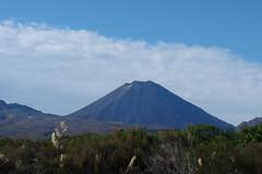 plain(0.0), plateau(0.0), fell(0.0), prairie(1.0), horizon(1.0), mountain(1.0), spoil tip(1.0), volcano(1.0), nature(1.0), mountain range(1.0), hill(1.0), ridge(1.0), wilderness(1.0), shield volcano(1.0), grassland(1.0), stratovolcano(1.0), mountainous landforms(1.0), volcanic landform(1.0),