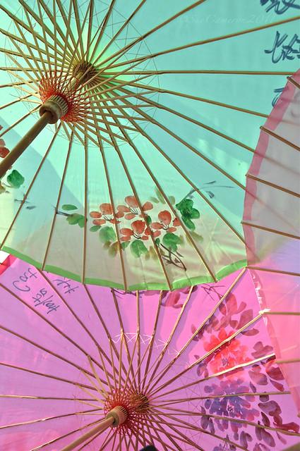 Parasols in pastel