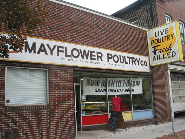 Live poultry, fresh killed in Cambridge street