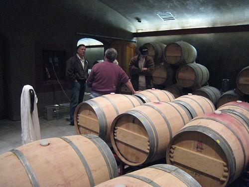 napa, Anomaly Vineyards, wine, wine tasting… IMG_1249