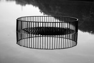 depth&reflection
