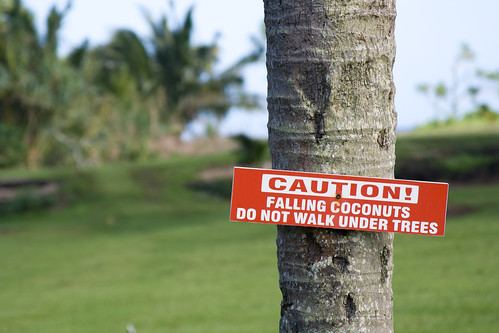 Falling Coconuts 2