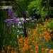 Monet's Garden ©haahr