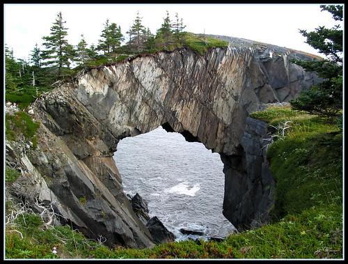 Newfoundland - East Coast Trail