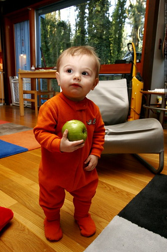 sequoia and his thanksgiving apple (granny smith)    MG 6498