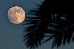 Moon and things - Mond und so'ne Sachen - ay ve seyler