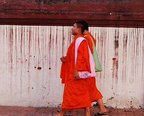 Chiang Mai Monks