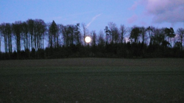 Full moon in Feldbrunnen