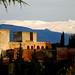 la alhambra by carlos jm