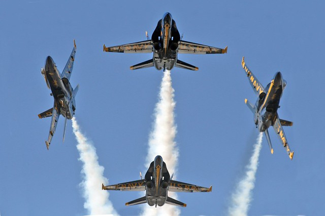 The 2008 Blue Angels