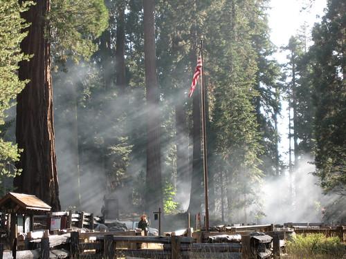 california nationalpark smoke sequoia kingscanyon
