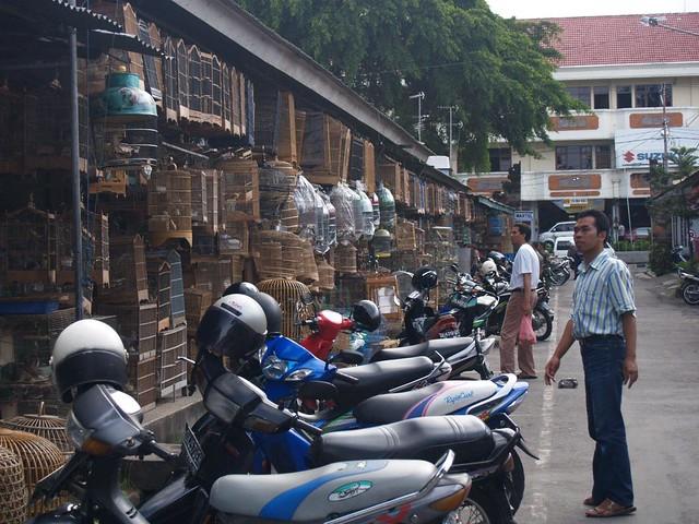 Bali Bird Market