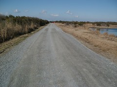 PHOTO: An important emergency evacuation route that eroded during Hurricane Sandy is restored for residents of coastal North Carolina at Back Bay National Wildlife Refuge. Greg Owens/USFWS