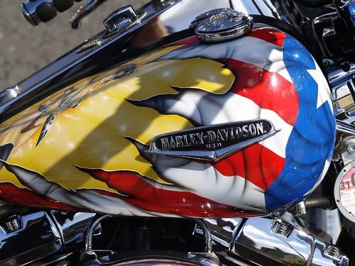 Harley-Davidson...Custom Paint Job