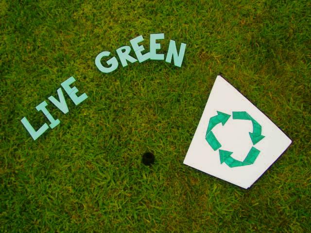 Green Living Kite