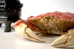 lobster(0.0), fish(0.0), food(0.0), crab(1.0), animal(1.0), shellfish(1.0), crustacean(1.0), seafood(1.0), invertebrate(1.0), dungeness crab(1.0), king crab(1.0),