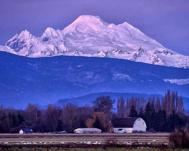 End of the day in the Skagit Valley
