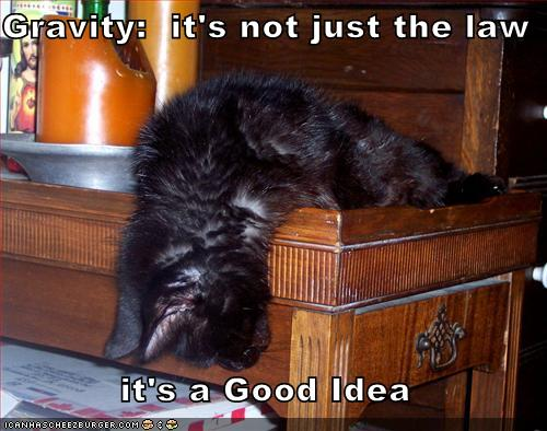 Gravity:  it's not just the law, it's a Good Idea