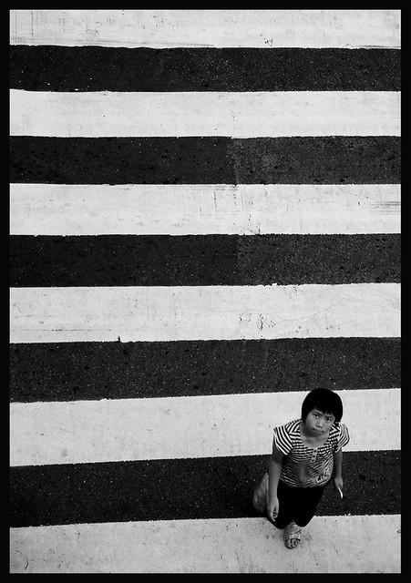 Stripes on Lines