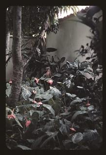 El Jardín, Quinta San José 1960