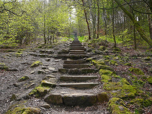 Steps on Otley Chevin
