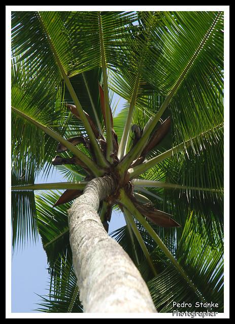 em outro ângulo... - Bali, Indonesia