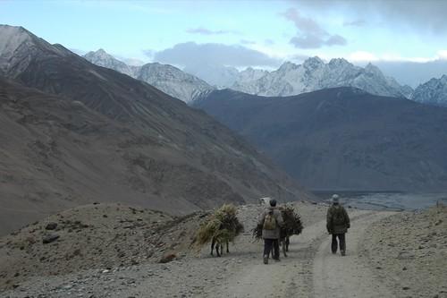 mountains animals donkeys tajikistan centralasia pamirs badakhshan aesdpn langhar