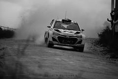0166 - Rally Argentina 2014 - Shakedown