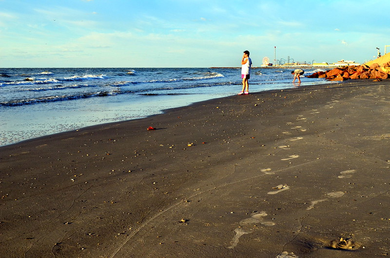 Todo mundo já catou concha na praia, Galveston, 2012. (2)