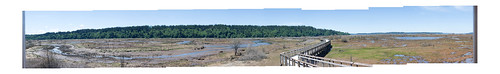 Nisqually Panorama Friday 3 June 2011