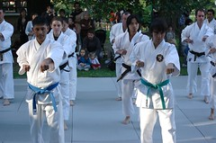 tang soo do(0.0), taekkyeon(0.0), striking combat sports(1.0), individual sports(1.0), contact sport(1.0), taekwondo(1.0), sports(1.0), combat sport(1.0), martial arts(1.0), karate(1.0), japanese martial arts(1.0),